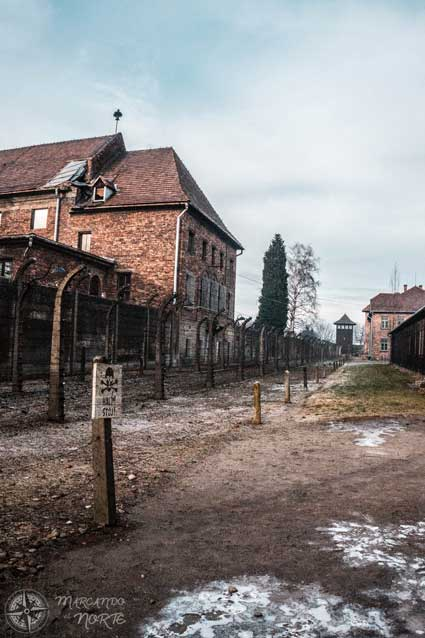 Invierno en Auschwitz